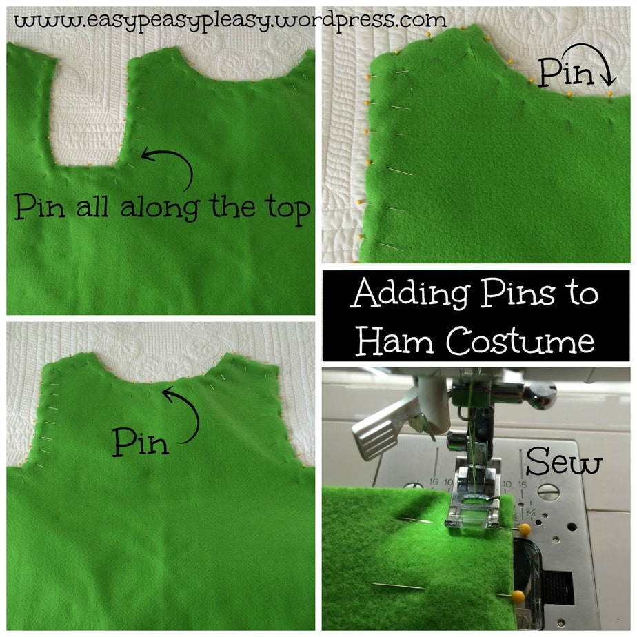 Adding Pins to Dr. Seuss Sam I Am Green Eggs and Ham Costume collage