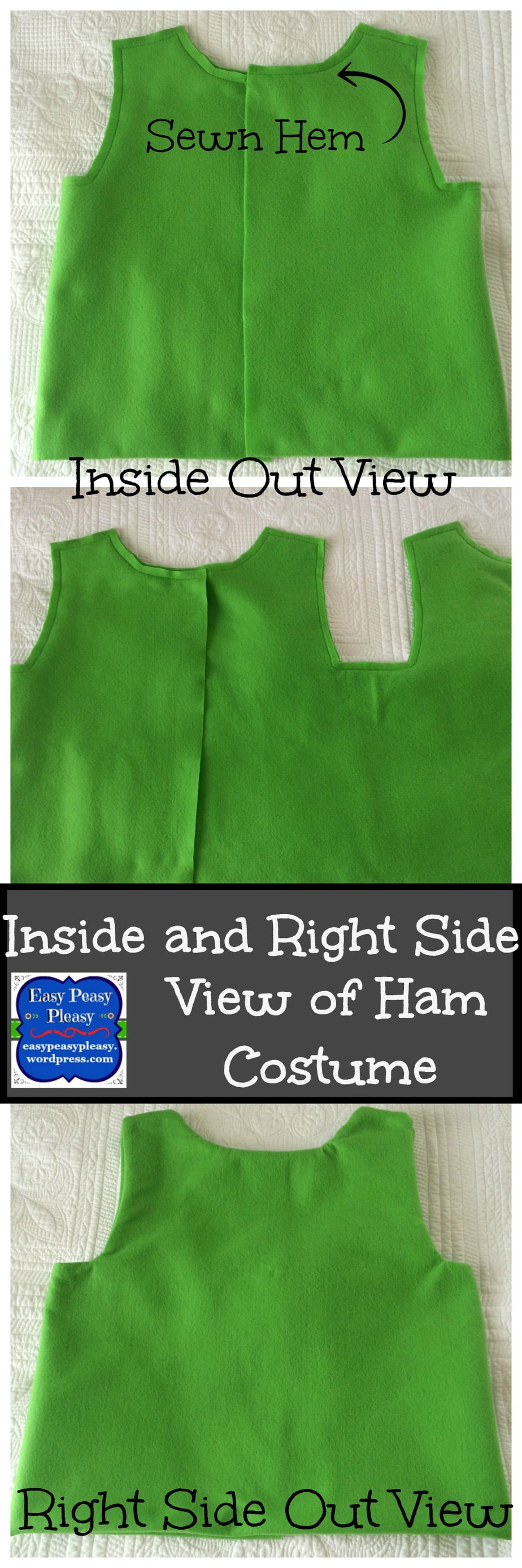 Inside and Right Side View of Dr. Seuss Sam I Am Green Eggs and Ham Costume collage