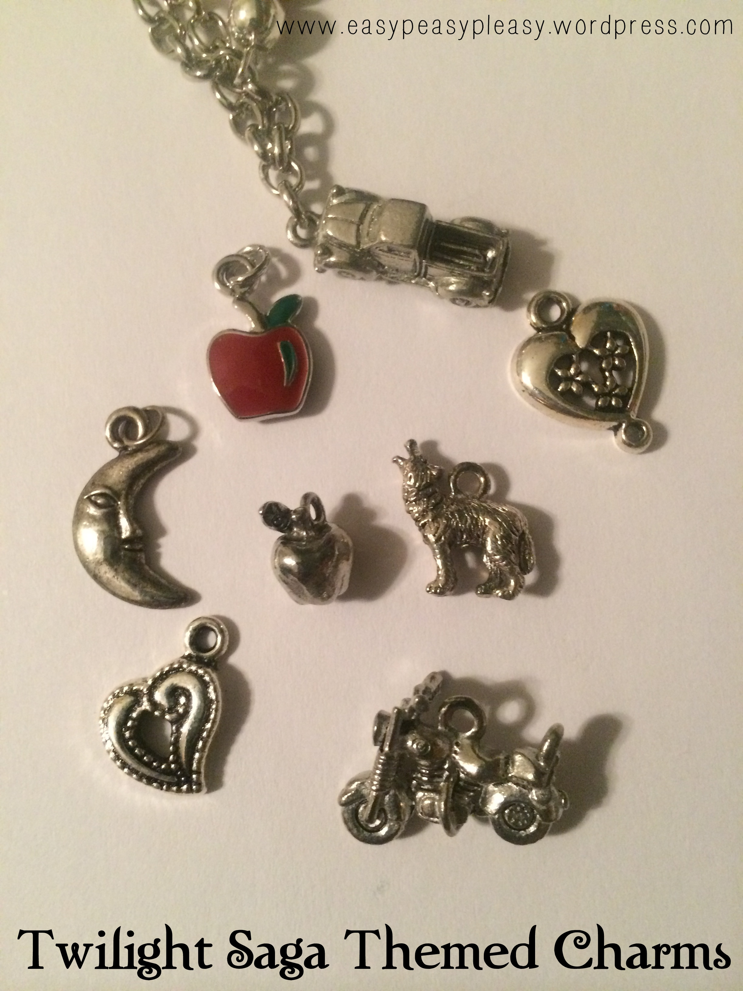 Twilight New Moon Party Jewlery Station Twilight Saga Themed Charms