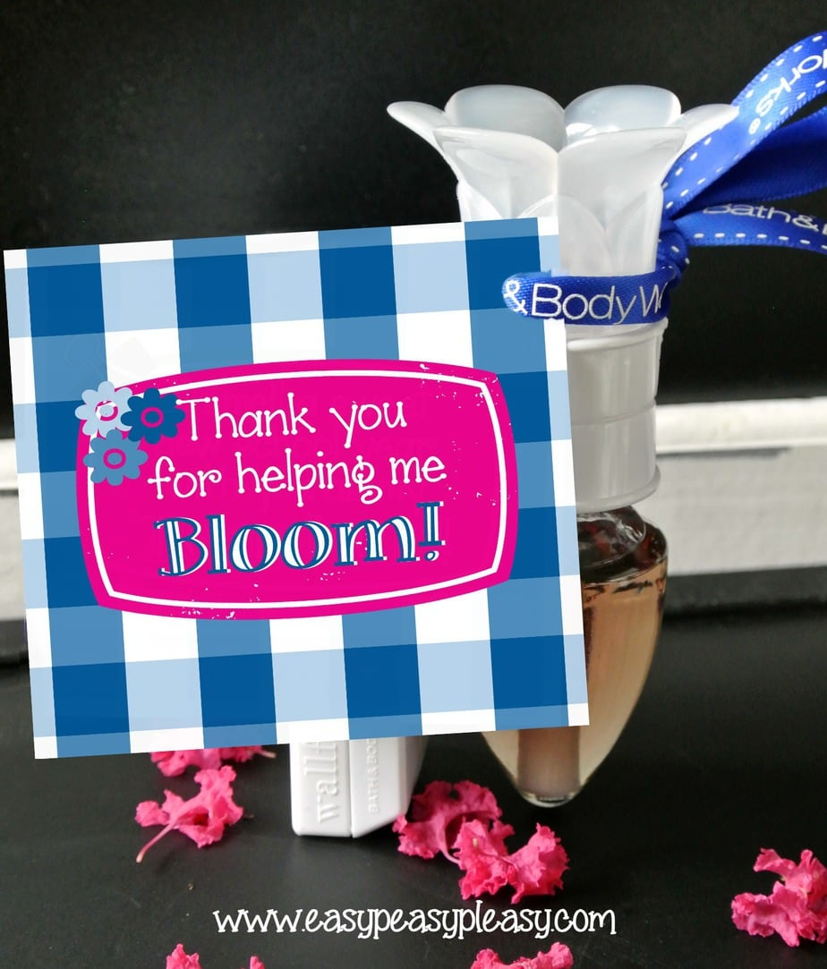 Free printable Teacher Appreciation gift tag and inexpensive gift idea!